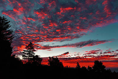 Photograph - Scarlet Daybreak Over The Pacific  by Kathleen Bishop