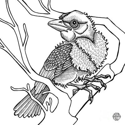 Drawing - Scarlet Tanager by Amy E Fraser