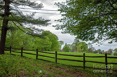 Photograph - Scenic Meadow by Ruth H Curtis