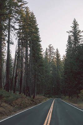 Photograph - Scenic Winding Road Through Yosemite National Park by Alex Grichenko