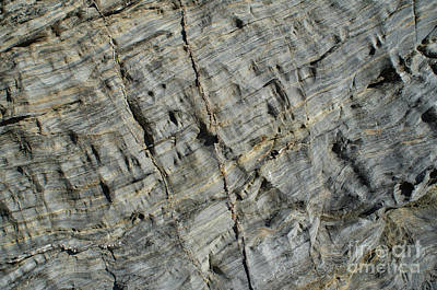 Photograph - Schist Texture In Porto Covo by Angelo DeVal