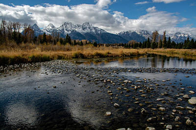 Photograph - Schwabacher Landing by Scott Read