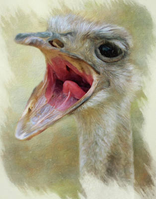 Photograph - Screaming Ostrich by Gloria Anderson