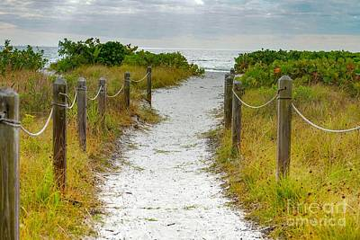 Photograph - Sea Breeze Trail by Susan Rydberg