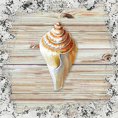 Painting - Sea Shell Beach House Rustic Chic Decor Iv by Irina Sztukowski