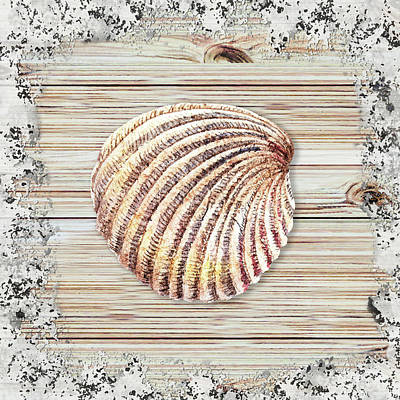 Painting - Sea Shell Beach House Rustic Chic Decor V by Irina Sztukowski