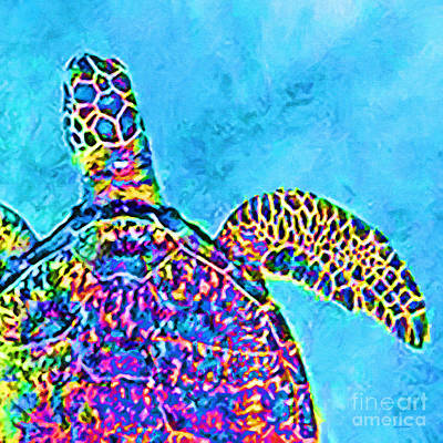 Photograph - Sea Turtle 20190202sq by Wingsdomain Art and Photography