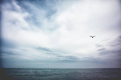 Seagull Flying Over Lake Michigan Art Print by Rebecca Nelson