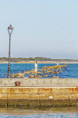 Wild And Wacky Portraits Rights Managed Images - Seagulls On Poles Among The Sea Rocks Royalty-Free Image by Vivida Photo PC