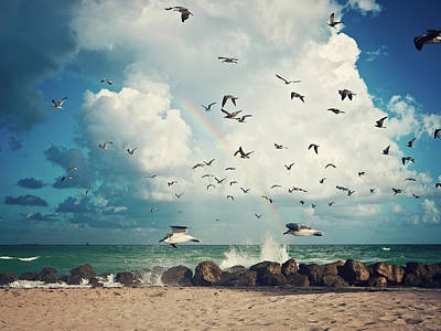 Photograph - Seagulls Passing by Taken By Paula Anddrade