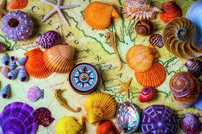 Photograph - Seashells On Old California Map by Garry Gay