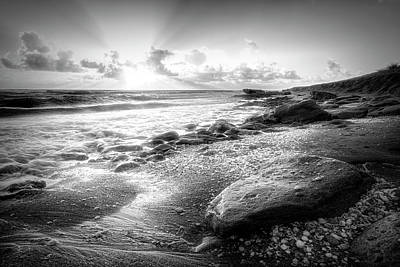 Photograph - Seashells On The Seashore In Black And White by Debra and Dave Vanderlaan