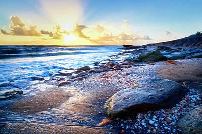 Photograph - Seashells On The Seashore Painting by Debra and Dave Vanderlaan