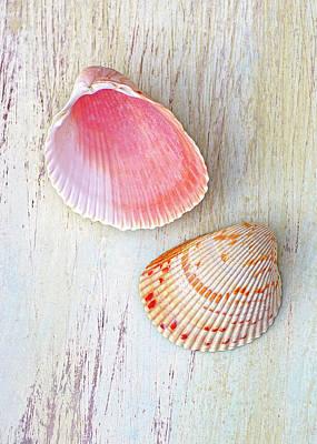Photograph - Seaside Bounty 3 by Kathi Mirto