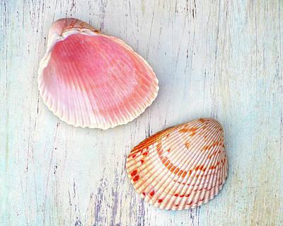 Photograph - Seaside Bounty by Kathi Mirto