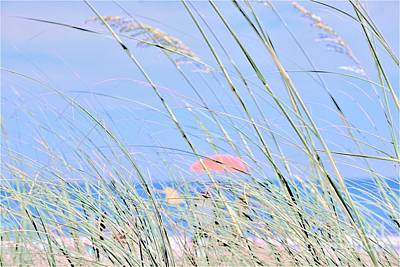 Photograph - Seaside by Merle Grenz