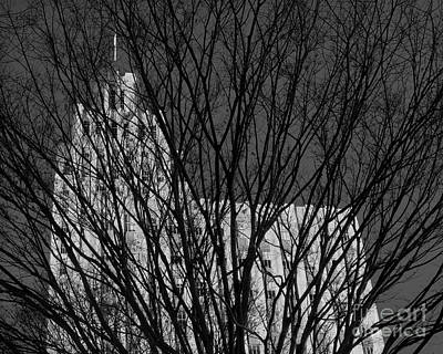 Photograph - Seasonal View Bw by Patrick M Lynch