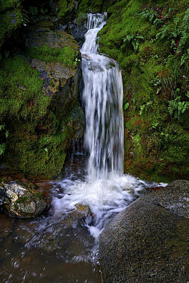 Photograph - Seasonal Waterfall by Janet Kopper