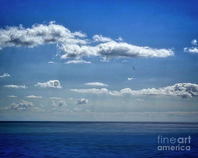 Photograph - Seaview Blues by Edmund Nagele