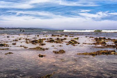 Photograph - Seaweed At Low Tide by Alison Frank