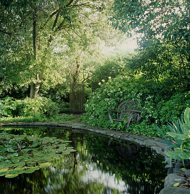 Photograph - Secluded Garden Pond With Sunlight And by Sandra Ivany