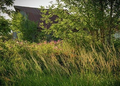 Photograph - Secret Barn by Jean Noren