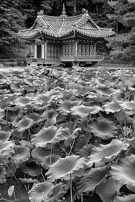 Photograph - Secret Garden In Black And White by Rick Berk
