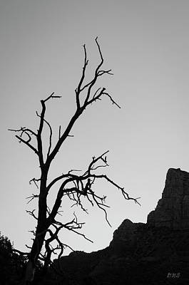 Photograph - Sedona Landscape Xvi Bw by David Gordon