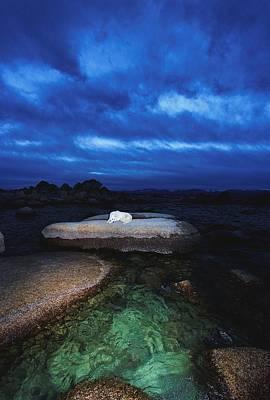 Photograph - Sekani Dream by Sean Sarsfield