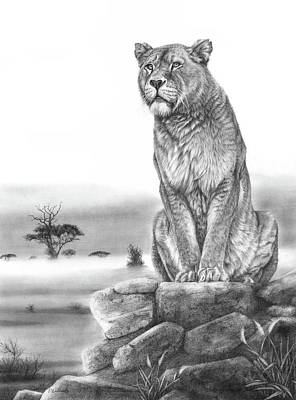 Drawing - Sentinel by Peter Williams