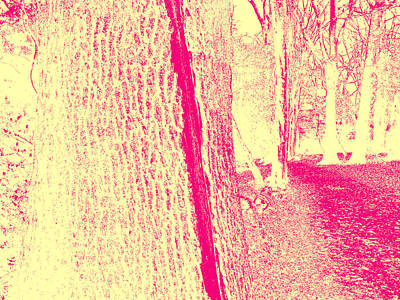 Photograph - Sepia Forest Trees In Highgate Woods 56 by Artist Dot