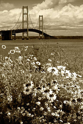 Photograph - Sepia Tone Of Blooming Flowers By The Bridge At The Straits Of Mackinac by Randall Nyhof
