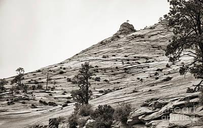 Photograph - Sepia Tones Zion Landscape Utah  by Chuck Kuhn