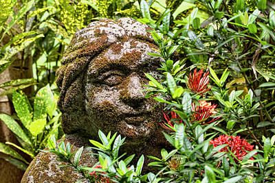 Photograph - Serene Goddess by Peggy Collins