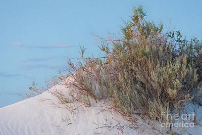 Photograph - Serenity At White Sands by Doug Sturgess