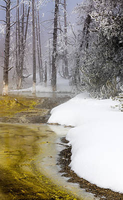 Photograph - Serenity Of Winter by Karen Wiles