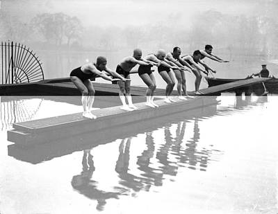 Photograph - Serpentine Swimmers by Becker