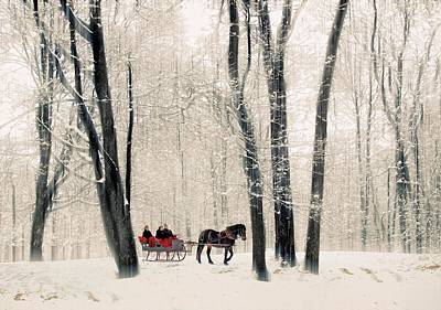 Photograph - Winter Sleigh Ride by Jessica Jenney