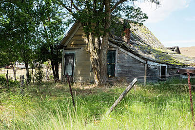 Photograph - Shaded Old House by Tom Cochran