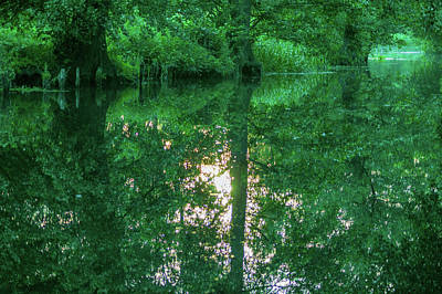 Photograph - Shadow And Light In The Spreewald by Sun Travels