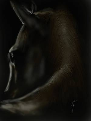 Digital Art - Shadow Horse by Darren Cannell