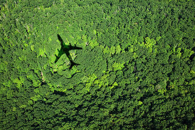 Photograph - Shadow Of Airplane Over Forest by Thomas Jackson