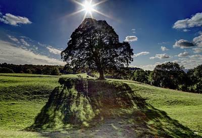 Photograph - Shadow Veil by John Meader