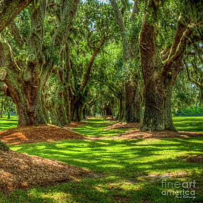Photograph - Shadows Avenue Of Oaks Sea Island Golf Club St Simons Island Georgia Art by Reid Callaway