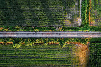 Photograph - Shadowy Tracks by Nick Smith
