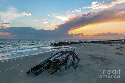 Photograph - Shallow Waters - Sullivan's Island by Dale Powell