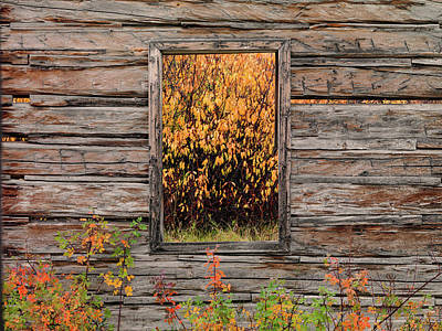 Photograph - Shane Cabin Window by Leland D Howard