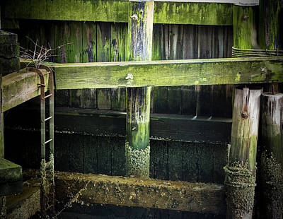 Photograph - Shape And Green Rot No.10 by Juan Contreras