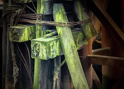 Photograph - Shape And Green Rot No.12 by Juan Contreras
