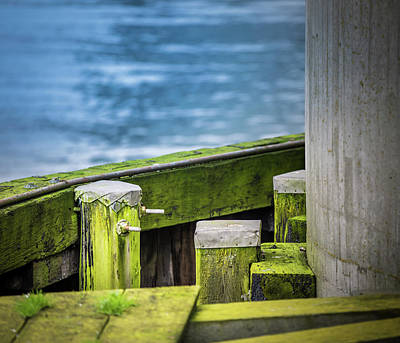 Photograph - Shape And Green Rot No.5 by Juan Contreras